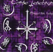 Carpe Tenebrum - Mirrored Hate Painting [CD]