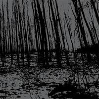 Psykotisk/Vredgad - Split [CD]