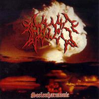 Caedes - Seelenharmonie [M-CD]
