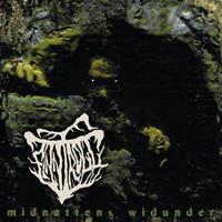 Finntroll - Midnattens Widunder [CD]